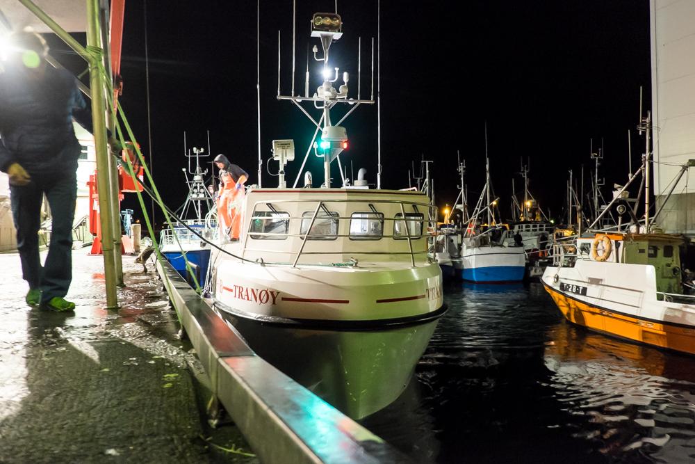 fiske-vengsoy-3